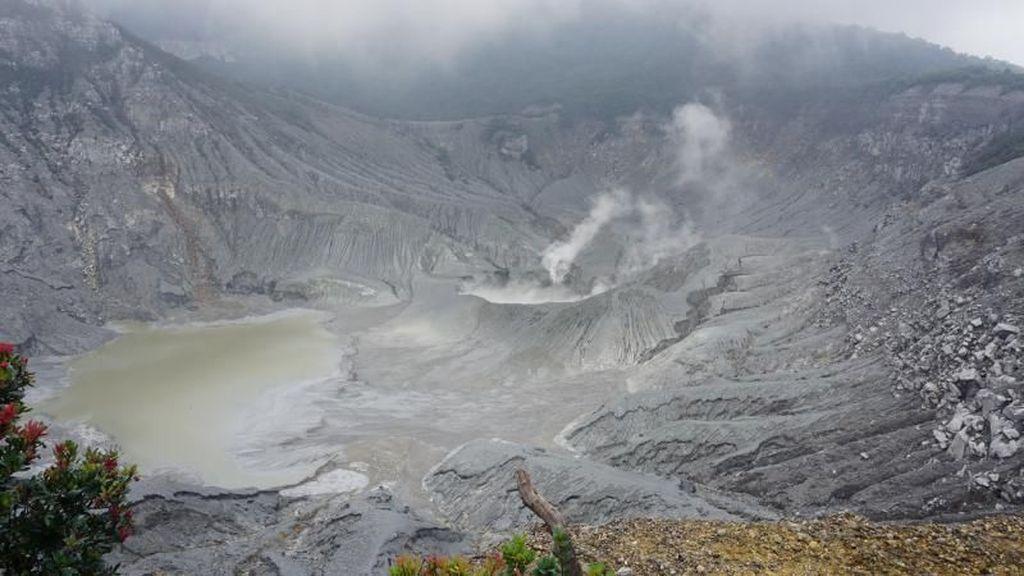 Taman Wisata Alam Gunung Tangkuban Perahu Mulai Dibuka
