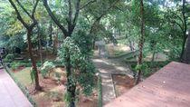 Yang Hijau-hijau di Jakarta