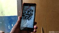3 Kisah Tragis Korban Tewas Dipatuk Ular Welang-Weling dari Tangerang-Bandung