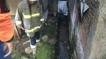 Petugas Damkar Lakukan Penyisiran Rumah Bocah yang Tewas Dipatuk Ular