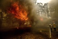 Ilustrasi kebakaran hutan di Australia