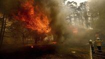 Pesawat Pemadam Kebakaran Hutan Jatuh di Australia, 3 Orang Tewas