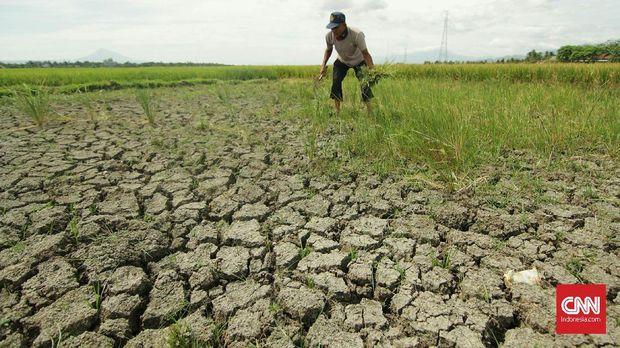 BMKG Rilis Status Lima Provinsi Siaga Banjir