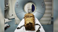 Naskah 3.500 Tahun Ungkap Rahasia Pembuatan Mumi