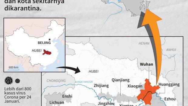 Virus Corona 14 Negara Ingin Evakuasi Warga dari Wuha