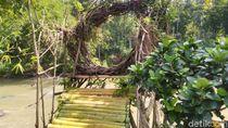 Foto: Tempat Wisata Selfie Baru di Ciamis