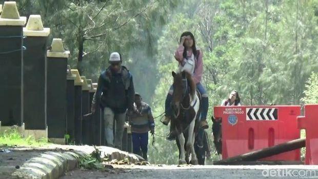 Pasca CFD Bromo, banyak pengunjung naik ojek kuda