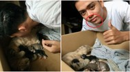 Demi Viral, Pria Malaysia Ini Minum Susu dari Puting Kucing!