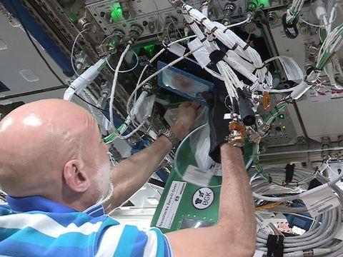 Astronot Luca Parmitano memanggang biskuit di ISS