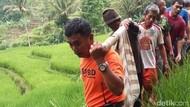 Dua Petani di Sumedang Tewas Tertimbun Longsor