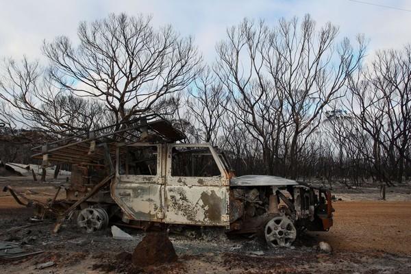 Kebakaran yang melanda Australia sejak akhir 2019 lalu telah mengakibatkan Pulau Kanguru yang berada di lepas pantai barat daya Adelaide rusak. (Foto: Getty Images)