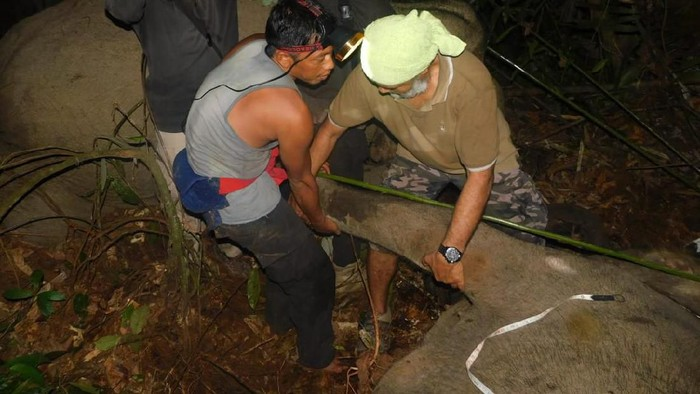 DOK. BBKSDA Riau/ Gajah terjerat di Bengkalis Riau