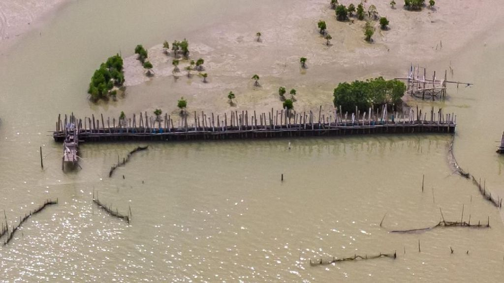 Reklamasi di Semarang Dituding Penyebab Abrasi Ribuan Hektare Lahan di Demak