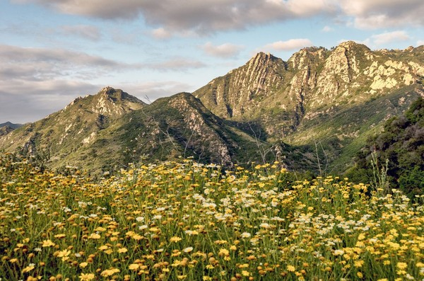Bagi turis, Calabasas merupakan kawasan untuk bertualang dan trekking di perbukitannya. Khususnya di Santa Monica Mountains National Recreation Area (iStock)