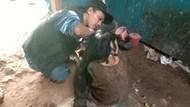 Disebut 27 Tahun Tak Mandi, Rambut Sukiyah Dihuni Kecoa hingga Tikus