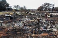 Kebakaran telah membuat satwa kehilangan habitat dan penduduk Pulau Kanguru merugi.