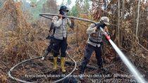 Hampir 2 Minggu, Karhutla di Pulau Rupat Riau Belum Bisa Dipadamkan
