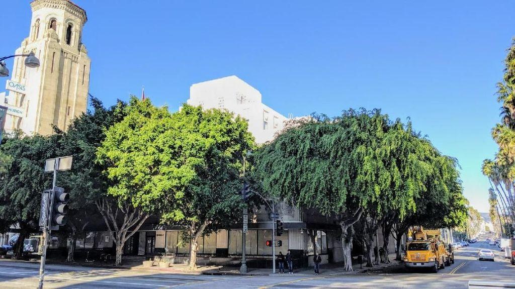 1 WN Amerika Terjangkit Corona di Orange County, KJRI LA Pantau Kondisi WNI