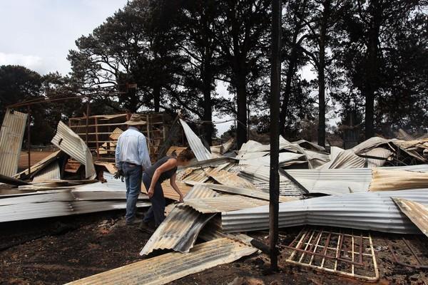 Di sisi lain, masyarakat yang tinggal di Pulau Kanguru juga mengalami kerugian akibat kebakaran tersebut. (Foto: Getty Images)