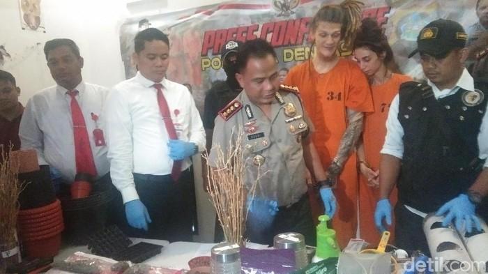 Tim detikcom/ Bule Rusia ditangkap tanam pohon ganja di Bali
