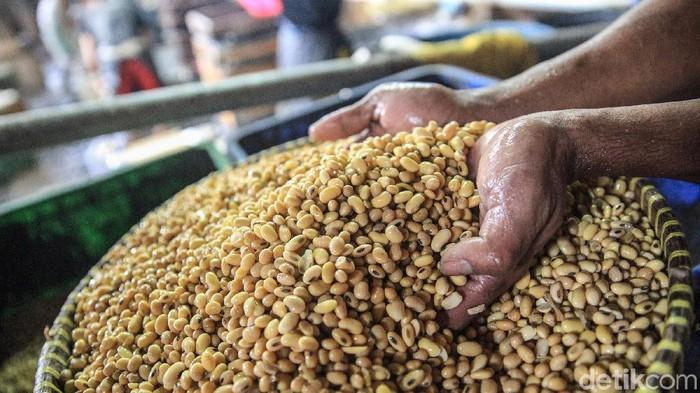 Para perajin tahu beraktivitas di pabrik pembuatan tahu yang berada di kawasan Pondok Labu, Jakarta Selatan, Selasa, (28/1/2020). Permintaan makanan olahan tersebut terus menggembirakan meski masih tergantung suplai bahan baku kedelai.