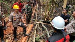 Geram, Kapolda Riau Usut Pelaku Illegal Logging Penyebab Karhutla