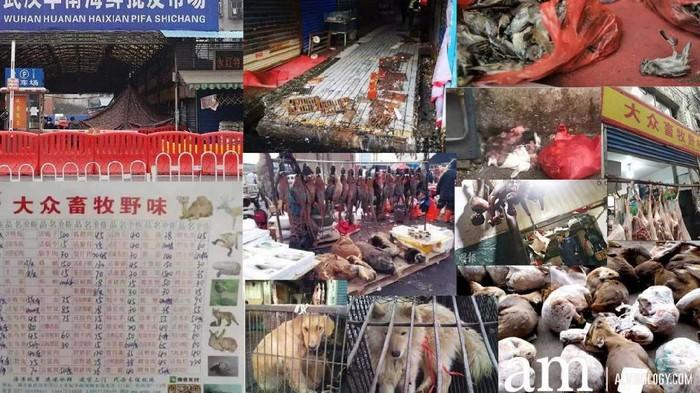 Pasar Seafood Huanan di Wuhan, China