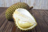 Inilah Saatnya Berpesta Durian di Surga Durian Pesisir Selatan
