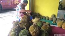 Legit Maknyus! Durian Serendet dari Kampung Benteng Ciamis