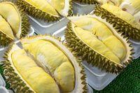Disebut Rajanya Buah, Durian Kini jadi Buah Eksotik yang Populer di Dunia