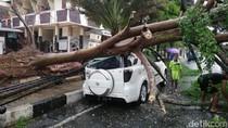 Sejumlah Pohon Tumbang Timpa Mobil dan Motor di Kota Banjar