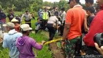 Video: Warga Ponorogo Temukan Jasad Bayi di Saluran Irigasi