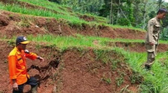 Sejumlah petugas meninjau lokasi pergerakan tanah di Sumedang Selatan