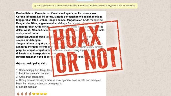 hoax virus corona