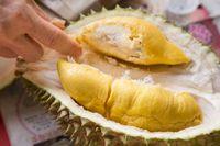 Mantul! 5 Bahan Sederhana Ini Ampuh Hilangkan Bau Durian di Mulut