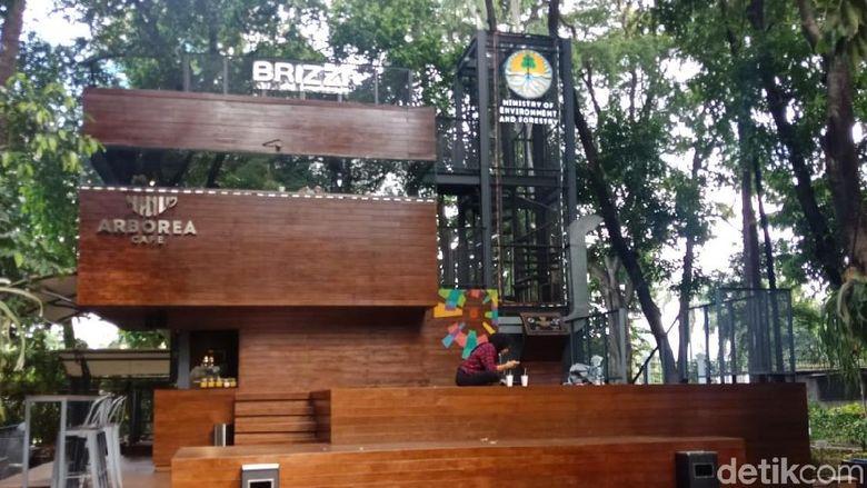 Arborea Cafe