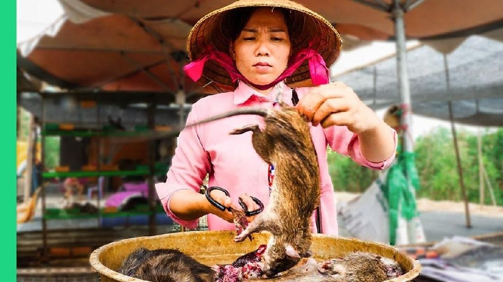 Tak Hanya di Wuhan, 5 Pasar Tradisional Ini Juga Jual Berbagai Daging Hewan Liar