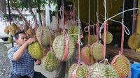 Pencinta Durian, Trenggalek Sedang Banjir Durian Enak!