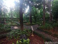 Di hutan kota ini tumbuh kurang lebih 110 tanaman.