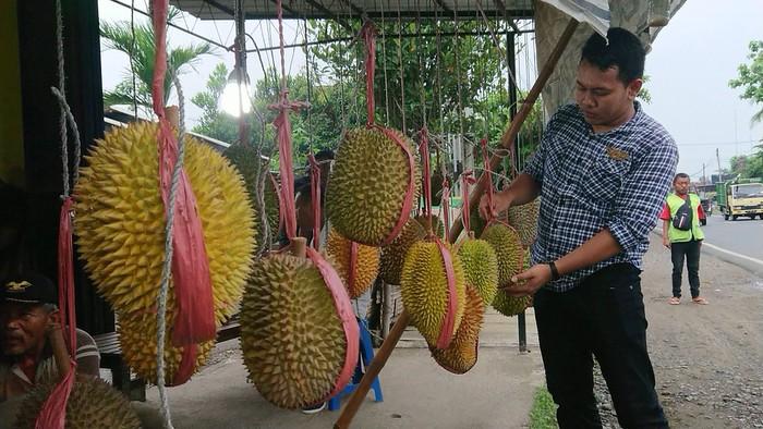 Durian Trenggalek