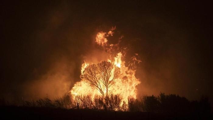 Kebakaran di Australia masih berlangsung. Si jago merah bergerak diluar kendali dan mengancam Canberra.