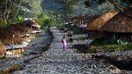 Rumah Adat Honai Khas Papua Terus Dilestarikan