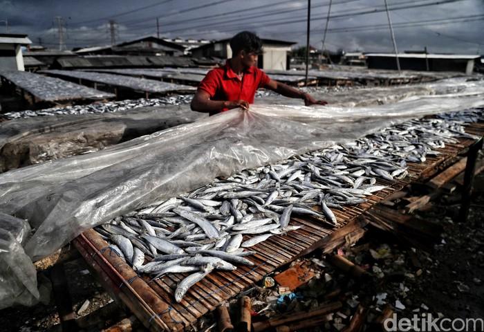Saat musim hujam, produksi ikan asin di Muara Angke menurun karena lamanya pengeringan. Sehingga pasokan ikan asin semakin menurun.