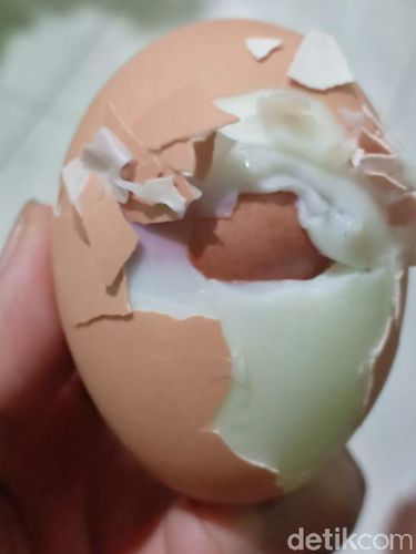 Ini Dia Penampakan Telur dalam Telur di Makassar