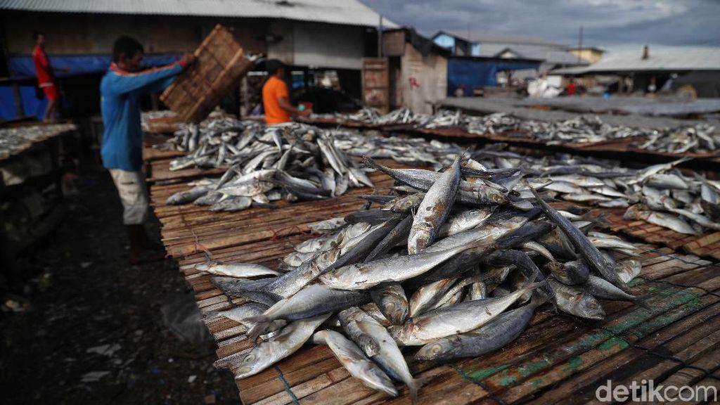 Mengandung Nitrosamin, Ikan Asin Bisa Picu Kanker Nasofaring
