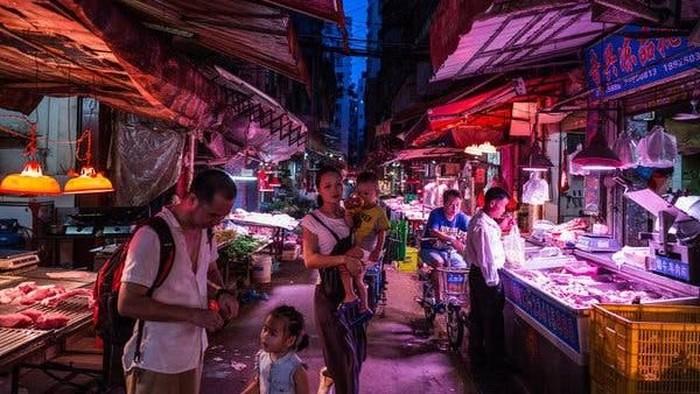 Pasar Tradisional Hewan Liar