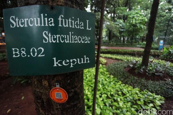 Pepohonan rindang di kawasan ini selain bisa menghasilkan oksigen yang menyegarkan, juga memberikan informasi edukatif mengenai jenis-jenis pohon khas Indonesia dan dunia.
