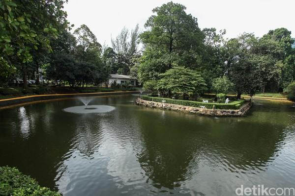 Di dalan hutan kota itu juga terdapat kolam.