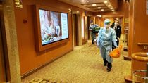 Pemerintah Masih Bahas Cara Pulangkan WNI di Kapal Pesiar Jepang