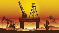 Cari Gas US$ 3, Pemerintah Buka Opsi Impor